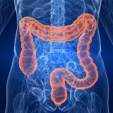 top gastroenterologist in bangalore